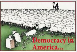 democracyinamerica